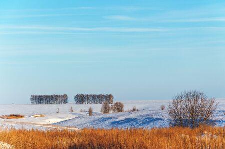 Sunny winter rural nature landscape.