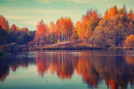 Beautiful autumn nature landscape.