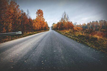Asphalt rural road passing through autumn forest Foto de archivo