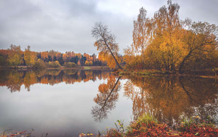Beautiful autumn calm nature landscape.Cloudy autumn scene with bare trees and forest lake in empty park.Concept of beauty of autumn nature.