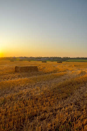 Agricultural field with haystacks during sunset.