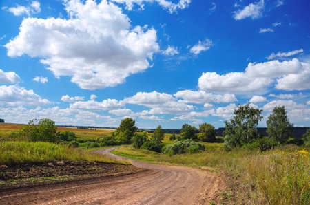 Sunny summer rural landscape with dirt country road and green trees.