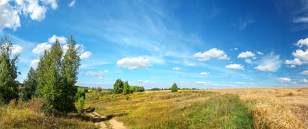 Bright summer rural russian landscape with country road and golden wheat fields