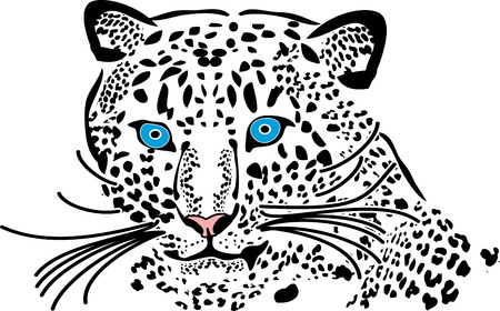 silhouette, lopard, black and white, blue eyes,  Vector