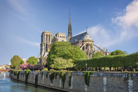 river: Notre Dame cathedral and river Seine in Paris