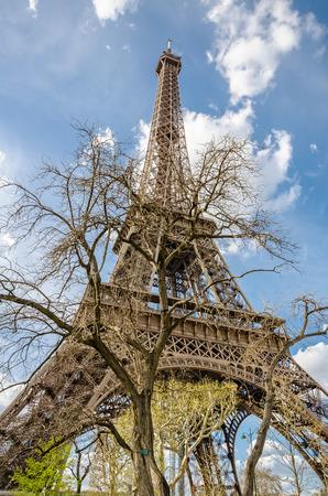 french culture: Paris, France - April 18, 2013: Close view through tree of Eiffel tower on Champs-de-Mars - symbol of Paris city.