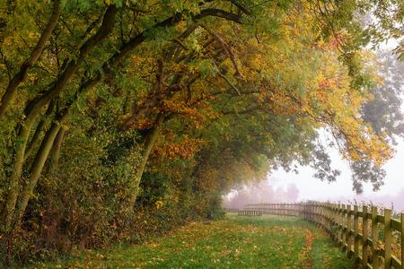 kent: Gillingham, United Kingdom - November 1st, 2015: Autumn landscape in Capstone farm country park, Kent