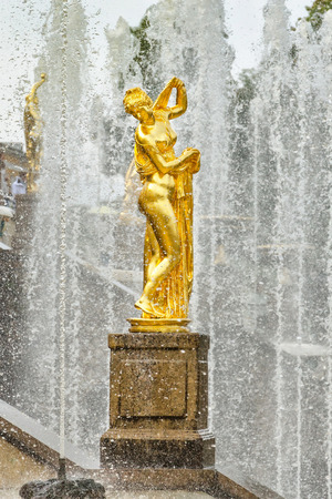 petergof: Petergof, St Petersburg, Russia - September 1, 2012: Golden statue of Venus Callipyge at fountains of Grand Cascade at Grand Petergof Palace. Unidentified tourists present on picture.
