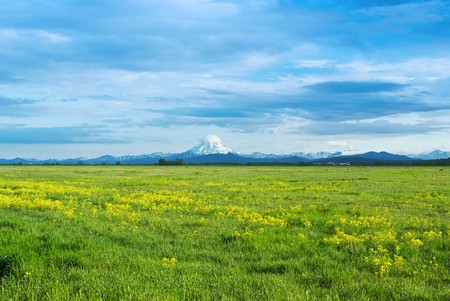 Green grassy field with yellow flowers against the evening sky and cloud volcano