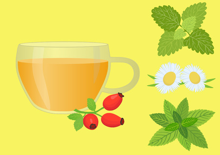 officinalis: Cup of herbal tea
