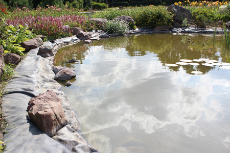 flower bed: Pond and flower bed in the garden