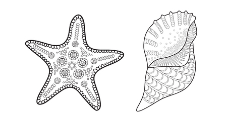 sea star: Sea star and shell, vector illustration for adult coloring book Illustration