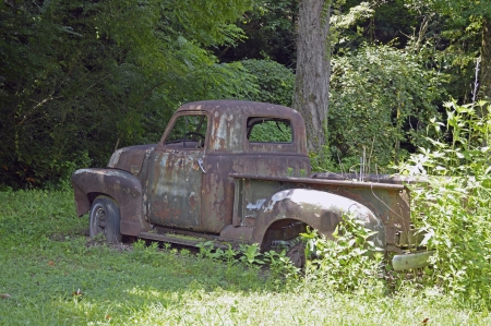 An old pick up truck that has sat untouched for too long