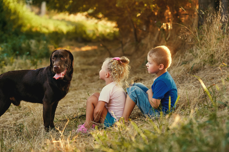 Two children walking with a dog breed Labrador Stock Photo