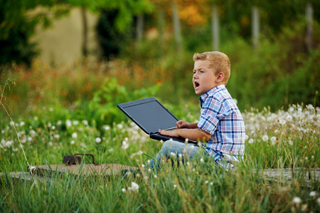 boy with laptop on the nature . The concept of preschool education