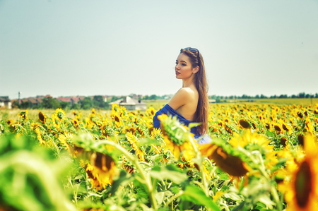 Beautiful young woman in a field with sunflowers Standard-Bild - 113726477