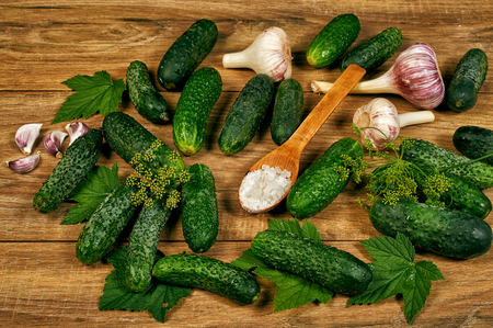 Cucumbers with garlic, salt and dill for pickling . Top view