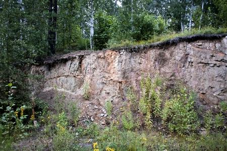 崖の端にある森林 写真素材