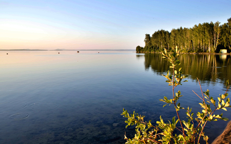 evening calm lake in the water reflected the forest Stock Photo