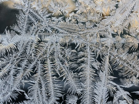 winter fairy forest, frosty patterns on the window glass