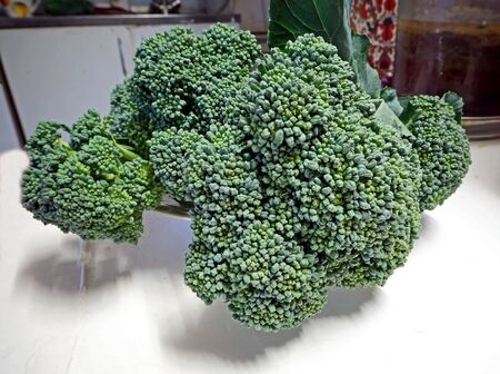 fresh green broccoli on a plate in the kitchen