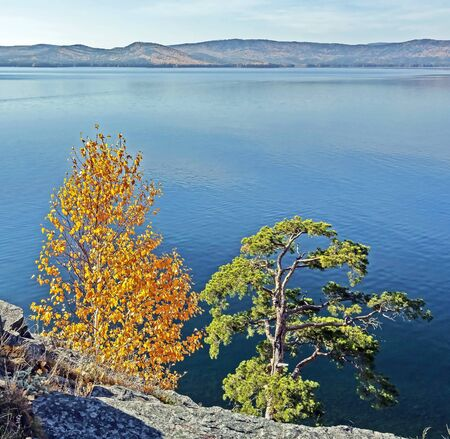 yellow autumn birch and green pine on the rocky shore of lake Turgoyak in the southern Urals Stock fotó