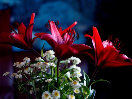bouquet with dark red lilies on a dark blurred background, macro, narrow focus area