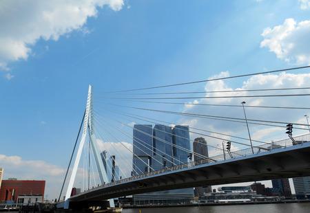 Erasmus bridge (Erasmusbrug), Rotterdam, The Netherlands photo