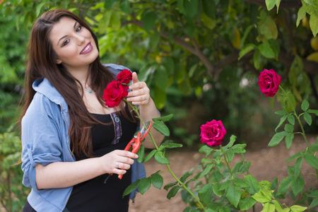 caucasian girl: Young beautiful Caucasian girl pruning roses in the garden
