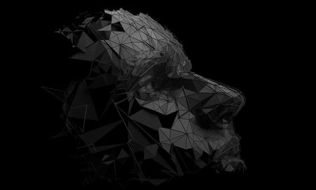 Polygonal human face. Stock Photo
