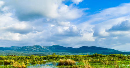 protected forested lake of Tonga sunshine, el Kala, Algeria