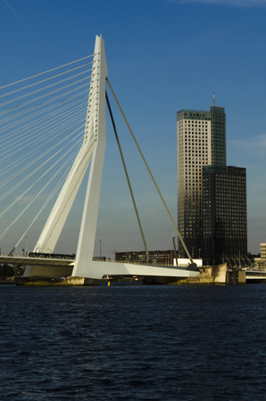 rotterdam: Rotterdam port