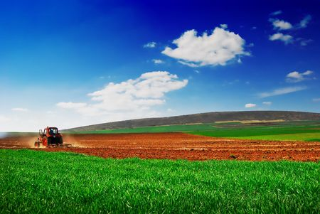 Cultivating tractor in the field Stock Photo