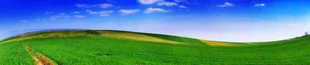 Landscape panoramic 5