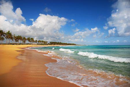 Exotic Beach in tropic islands photo