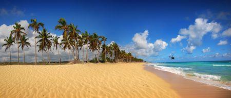 Exotic Beach in tropic islands
