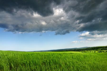 Green fresh field, Blue Dramatic  Sky And Grey dark Clouds  photo