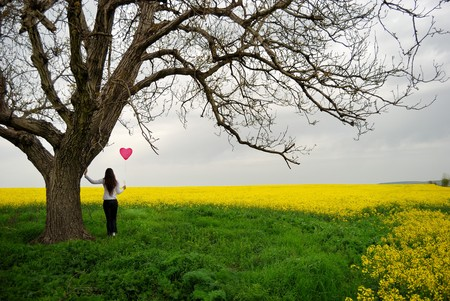 Beautiful girl with balloon in the field photo