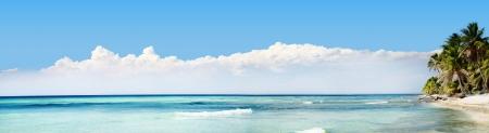 panorama beach: Exotic Beach in Repubblica Dominicana, Punta Cana