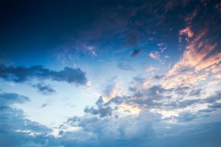 ciel avec nuages: Arbre vert et Big champ frais, coucher de soleil coup