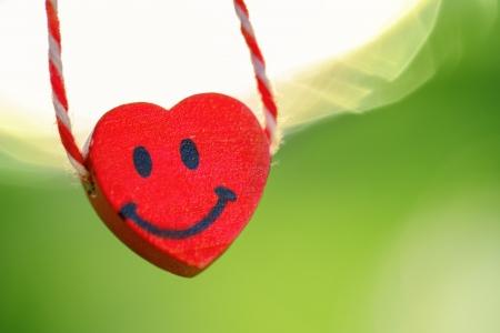 Heart shape isolated on green, close up photo Stock Photo