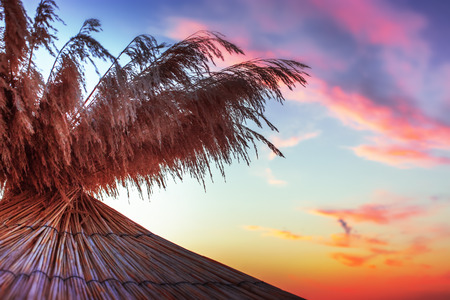 Vivid sunrise on a beautiful sandy beach with sunshade  photo