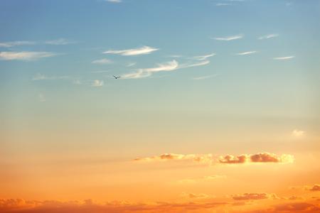 naranja: Hermoso amanecer en el horizonte Foto de archivo