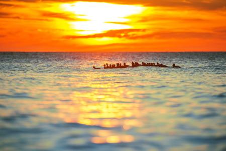 baby ducks: Beautiful sunrise over the horizon and baby ducks Stock Photo