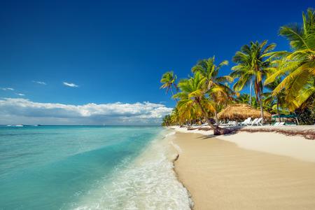 playas tropicales: Paisaje de playa paradis�aca isla tropical con perfecta soleado cielo Foto de archivo