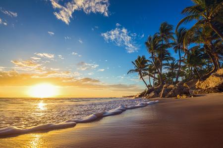 Landscape of paradise tropical island beach, sunrise shot photo