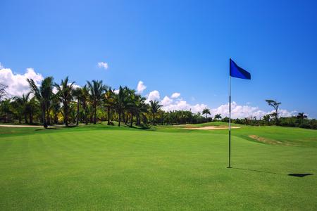Golfbaan. Mooi landschap van een golfbaan met palmbomen in Punta Cana, Dominicaanse Republiek Stockfoto - 40978873