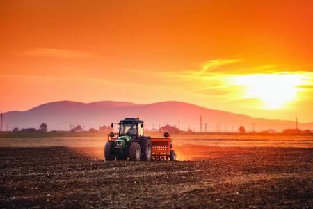 Boer met tractor het zaaien van gewassen op het veld op zonsondergang