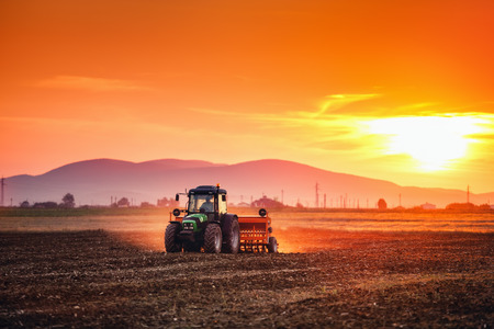 Farmer with tractor seeding crops at field on sunset