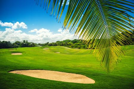 Pole golfowe. Piękny krajobraz z pola golfowego z palmami w Punta Cana, Dominikana Zdjęcie Seryjne